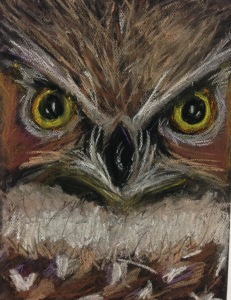 Mattie's second place work: A pastel owl